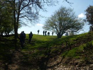 Up a hill