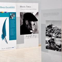 art, brochure, graphic design, poster, illustration, brand,