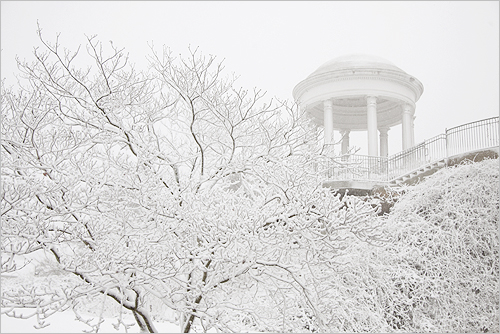 Snow in the deep South - Vestavia Hills - IMG_5382 by Bahman Farzad