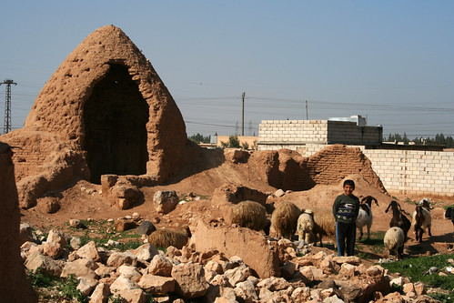 houses boy house brick animal animals wall goat goats syria beehive aleppo سوريا سورية سوريّة حلب‎