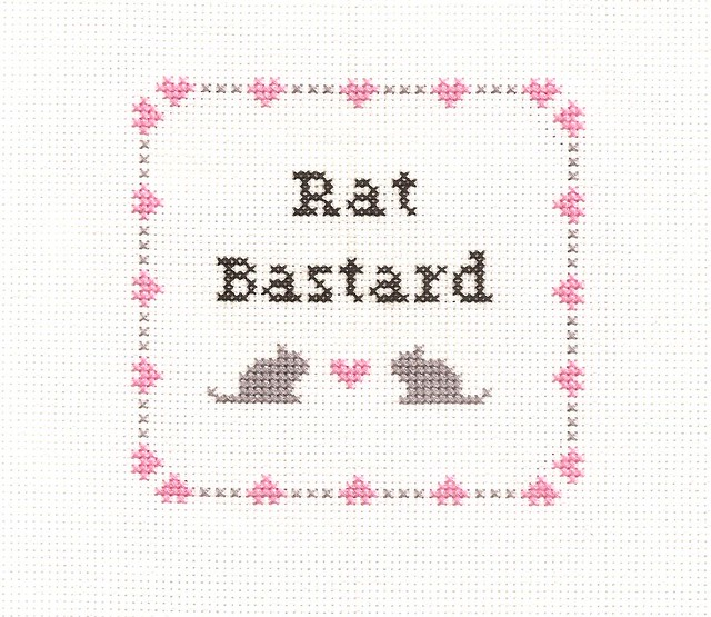rat bastard flickr photo sharing