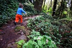 preschool trail runner    MG 2159