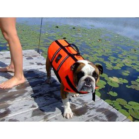 bulldog life vest dog life jacket bulldog flickr photo sharing 3122