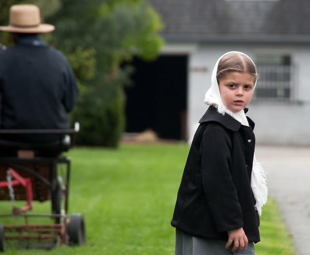 Header of Amish