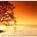 Sun VS Cokin at Kelanang Beach (Digital Camera Magazine Malaysia) July 09 issue by SHAZRAL