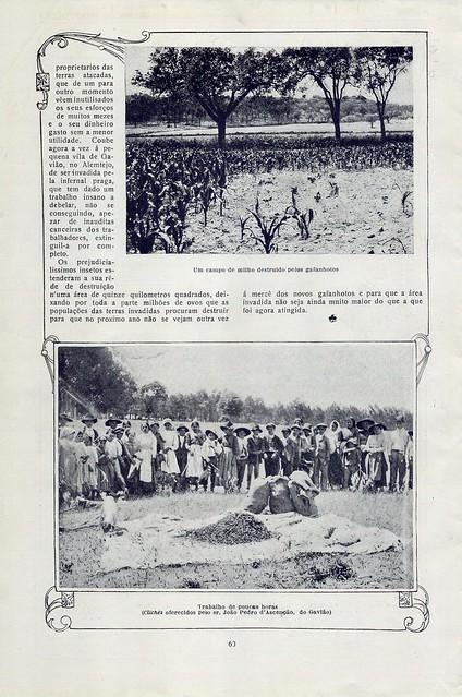 Ilustração Portugueza, No. 543, July 17 1916 - 25