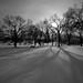 Saskatoon, SK by Dr_Drill