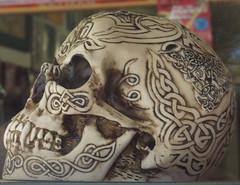 Skull at Fats Comics, Ipswich Rd, Annerley Junction, Brisbane, Queensland, Australia 090617