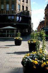 Uppsala Blvd.