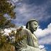 Small photo of Amida Buddha at Kotoku-in in Kamakura
