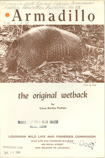 Armadillo the original wetback