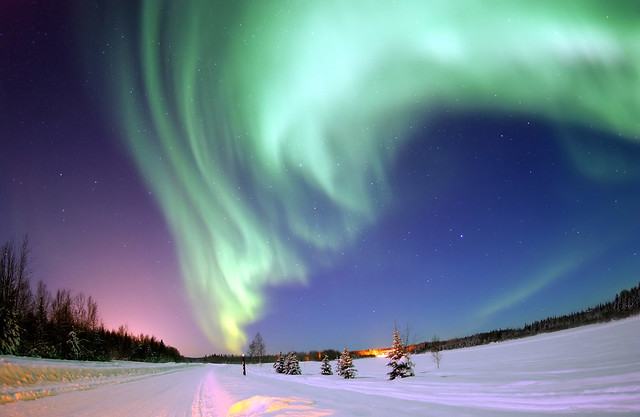 Aurora Borealis, the colored lights seen in the skies around the North Pole, the Northern Lights, from Bear Lake, Alaska, Beautiful Christmas Scene, Winter Star Filled Skies, Scenic Nature