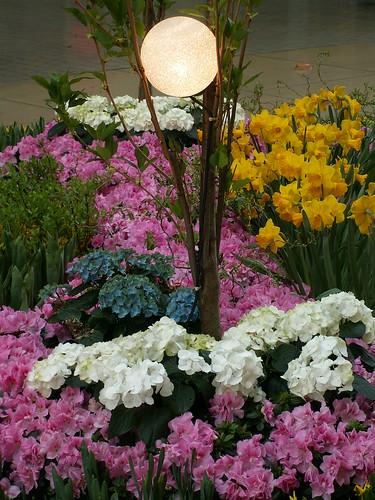 Manche bunte Blume am Strand, manches gülden Gewand im WTC Dresden dem Himmelreich des Frieden, ein Wandersmann im rauhen Pilgerkleid, heute ist an Busch und Baum und Strauch das Blütenparadies des Lenzes 094