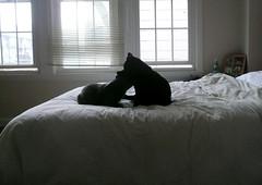 duvet cover, bed frame, textile, furniture, room, bed sheet, bed, interior design, bedroom,