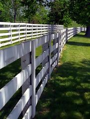 """Lexington Kentucky - Donamire Farm """"Miles Of White Fence"""""""