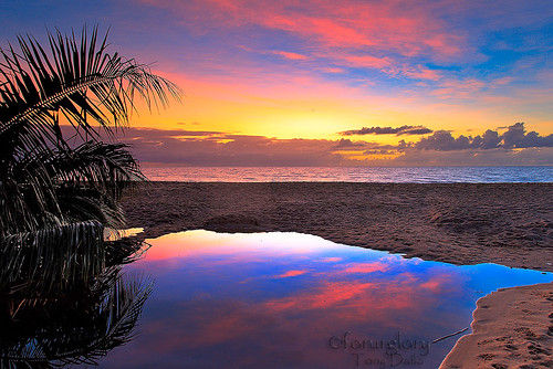 Reflection-PalmCove,Cairns,Australia