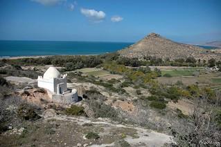Alcudia de Berberia