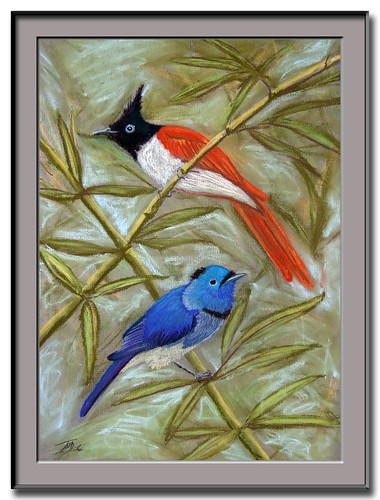 Asian Paradise Flycatcher and Black-naped Monarch painting
