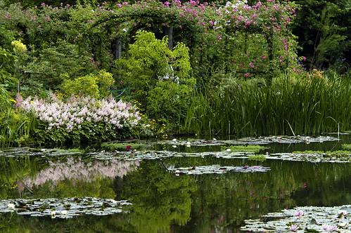 Monet's Garden Reflections