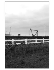 Project 3, Natural/Urban Landscape #3