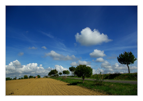 sky france landscape ciel paysage campagne sudouest hautegaronne midipyrénées francelandscapes paysagedefrance monderrièrechezmoi elleestbellelafrance autourdemuret31
