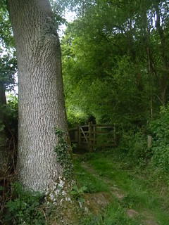 Tree with gate