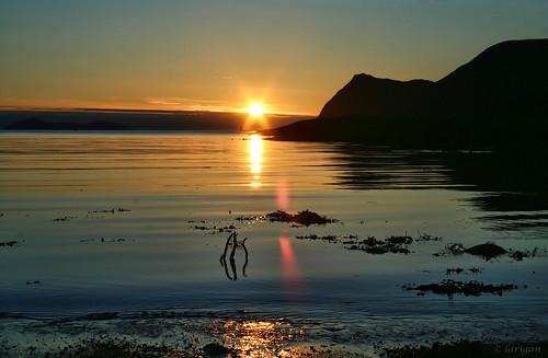 sunset sea mountains seaweed godøy tueneset anawesomeshot citrit