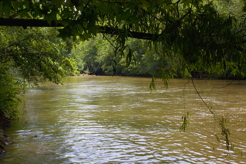 trees water river nc northcarolina lincolncounty brownwater catawbariver southforkriver davidhopkinsphotography ncpedia
