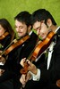 SSW Violins