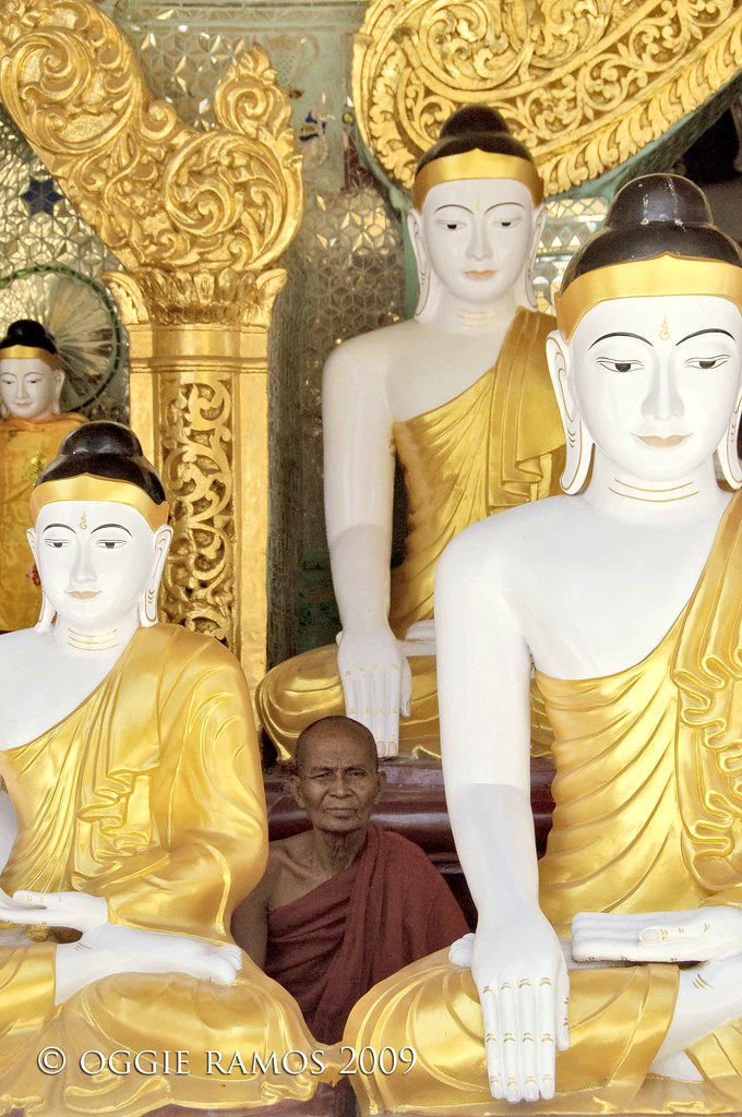 myanmar shwedagon buddhas and monk