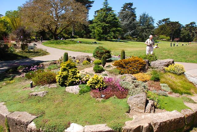 San Francisco Botanical Garden Flickr Photo Sharing