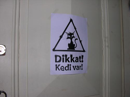 Vigyázat! Macska!