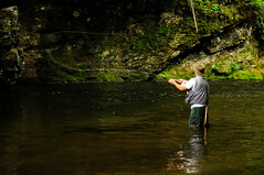stream, fishing, water, recreation, nature, outdoor recreation, recreational fishing, reflection, wilderness, fly fishing,