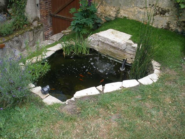 Forum Bassin  Le forum des passionnés de bassin, jardins aquatiques