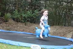 jumping, trampolining--equipment and supplies, play, trampoline,