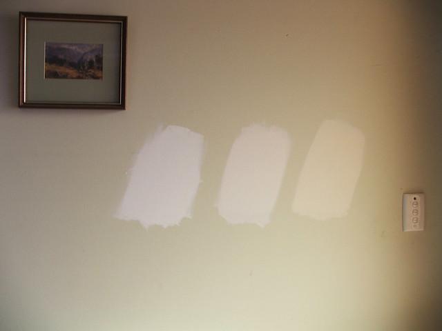 Dulux White Paint B Q