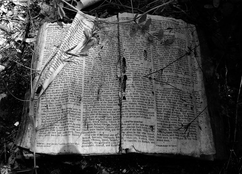 Into the Promised Land, Joshua 18, Abandoned Bible, White Oak Bayou, Houston, Texas 0420091320BW