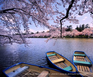 A lazy day. (Hirosaki Japan). © Glenn Waters. (Explored).  3,500 visits to this photo.  Thank you.