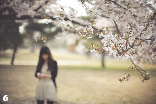 Sakura B.. by mark justin harvey
