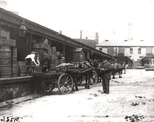 Loading fish Fish Quay North Shields c.1890