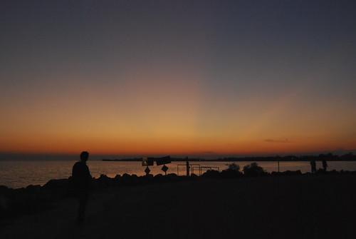 sunset usa birds cedarkey valentinesday paynesprairie