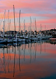 """Marina Morning"""