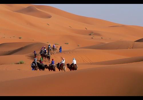 travel holiday sahara sunrise sand desert jeep dune camel morocco marocco deserto cammello merzouga ergchebbi merzuga nikond90 nikkor18105 absolutegoldenmasterpiece ergrachidia