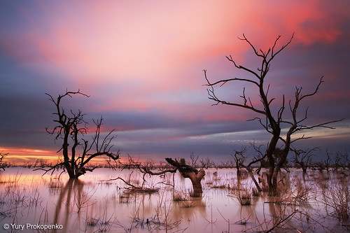 Sunset at Menindee Lakes, Outback NSW, Australia
