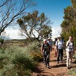 Our Kilimanjaro Trekking Team - Mt. Kilimanjaro, Tanzania