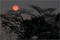090217 絢麗的夕陽