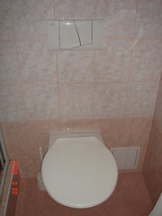 bathtub(0.0), urinal(0.0), plumbing fixture(0.0), sink(0.0), floor(1.0), toilet(1.0), room(1.0), toilet seat(1.0), tile(1.0), bidet(1.0), bathroom(1.0), flooring(1.0),