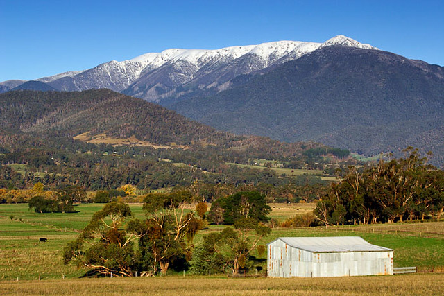 Mount Victoria Australia  City new picture : Mount Bogong, Victoria, Australia IMG 5129 Mount Bogong a photo on ...