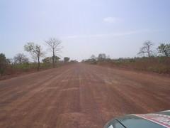 Estrada na Gambia