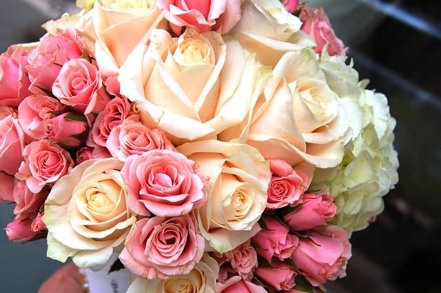 00a40e6a0 ·আ° ¦ أقبلت وفي ملامحها خجل، عروسنا أميرة الذوق ¦ °আ· [الارشيف] - الصفحة  رقم 98 - منتديات شبكة الإقلاع ®